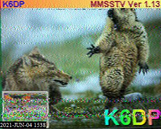 K5TED image#38